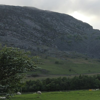 Nant Ffrancon is a steep-sided glacial valley dropping to Bethesda between the Glyderau and the Carneddau. - wikipedia