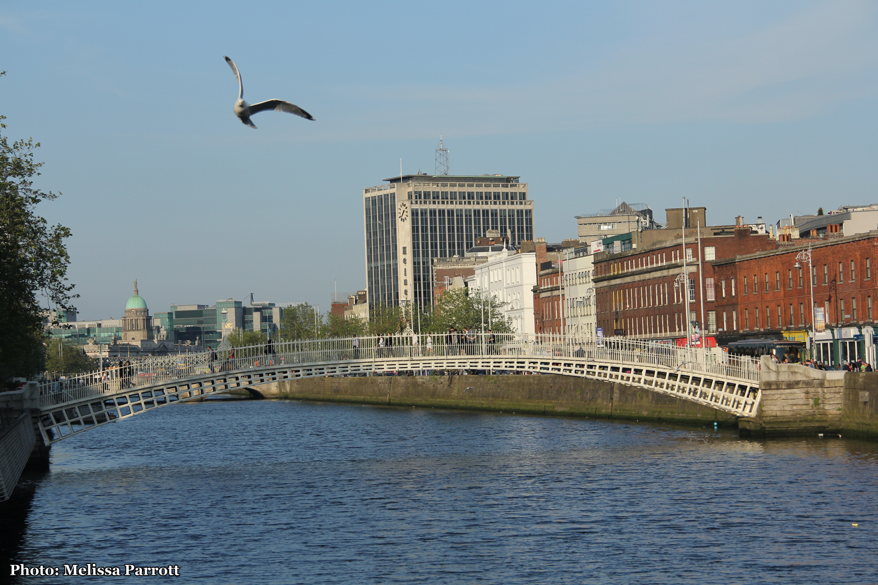 Ha'penny bridge + the Customs House in the background
