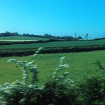 From the train, between Heuston and Portlaoise Co. Laois, Leinster