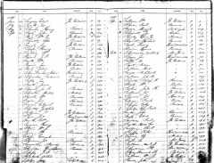 Historic images include immigration and naturalization records