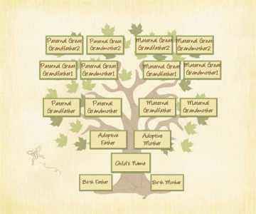 Adopted Genealogy has four roots