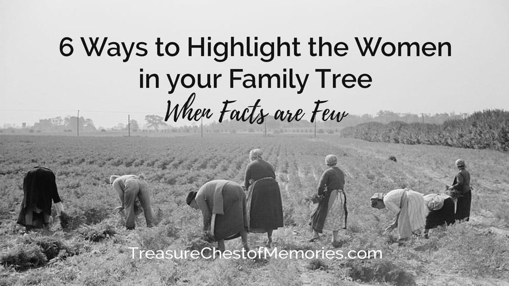 6 ways to highlight the women in your family Tree header graphic