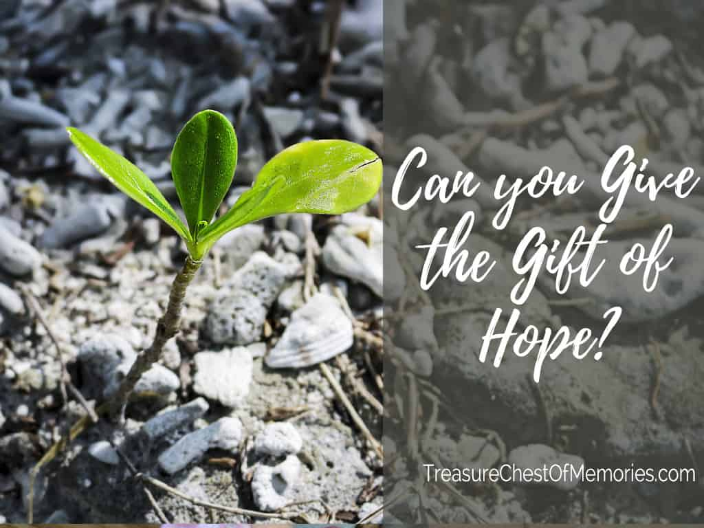 Can you give the gift of Hope