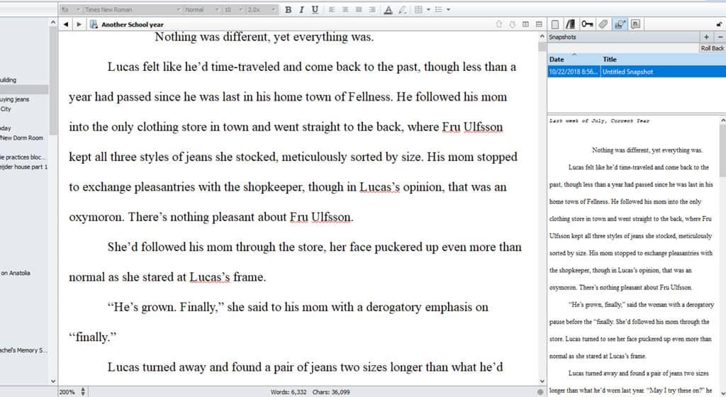 Screenprint of Scrivener's inspector mode