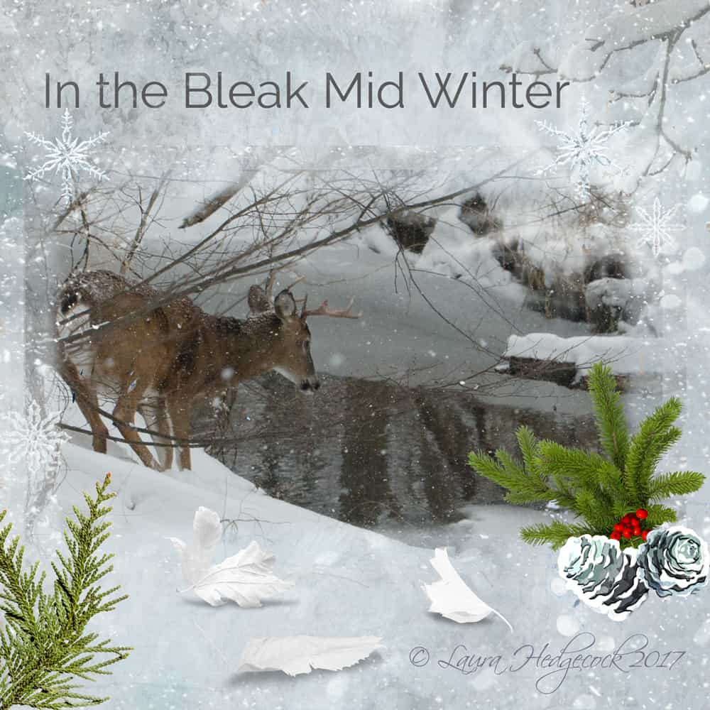 Blog Caroling In the Bleak Midwinter