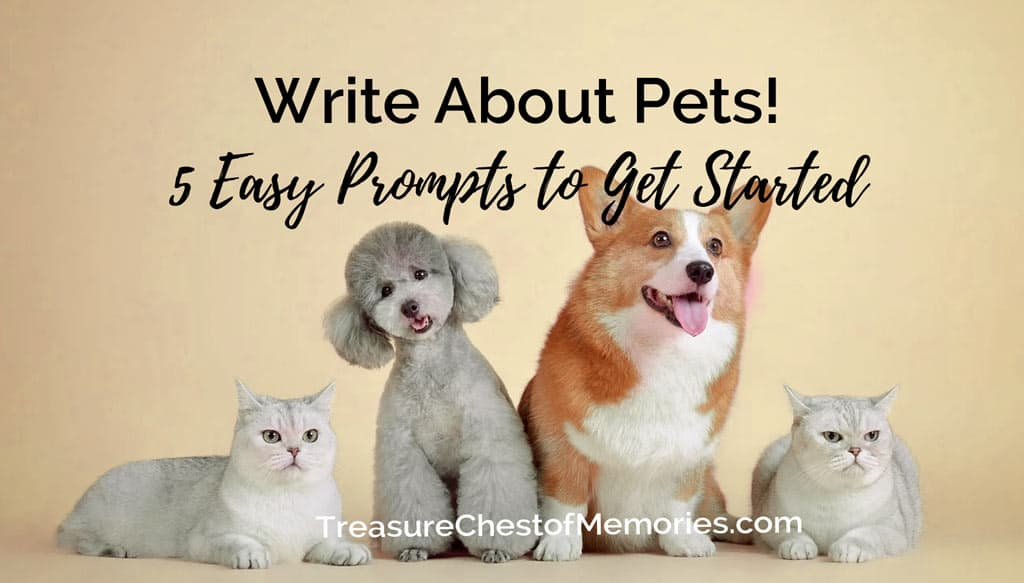 Write about Pets Five easy prompts Graphic with several pets