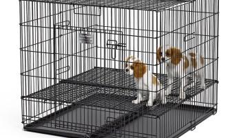 "Midwest Puppy Pen 1x1"" Floor Grid 36 x 36"""
