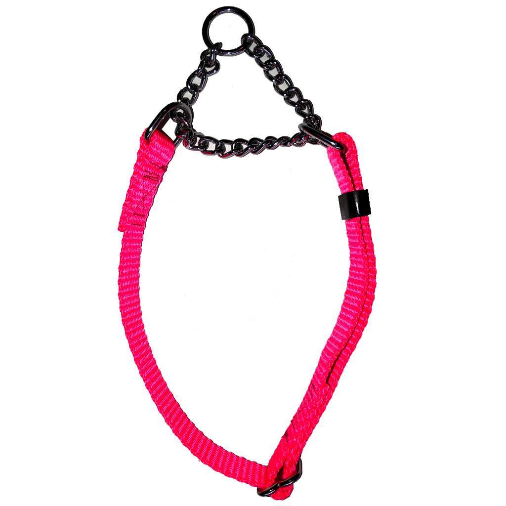 Martingale - Nylon with Chain