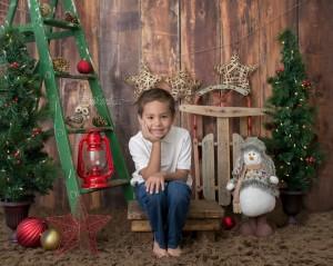 Rustic Christmas*