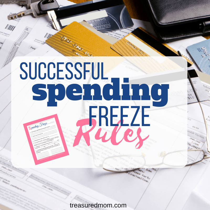 Need to save a bunch of money FAST? A spending freeze is the quickest way to do it. If you follow the right spending freeze rules, you'll be on your way to paying off that debt, creating an emergency fund, or saving for that next big expense. Download the Free Spending Freeze Success Packet.