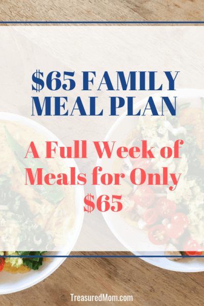 Asian Chicken Salad for Cheap Family Meal Plan
