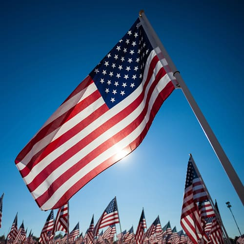 CLOSED Sunday 28 May for Memorial Day