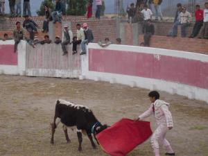 The matador vs the bull at the bull fight in Socos, Peru!
