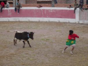 The clown vs the bull at the bull fight in Socos, Peru!