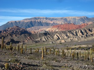 Beautiful view near Santa Rosa de Tastil, Argentina!