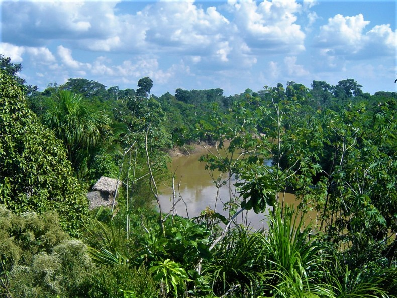 A view of the Amazon River tributaries from our jungle lodge.