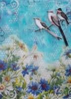 Debby Graf - daisies
