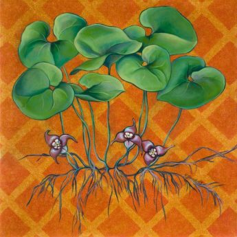 """Wild Ginger, 30"""" x 30"""". oil on canvas"""