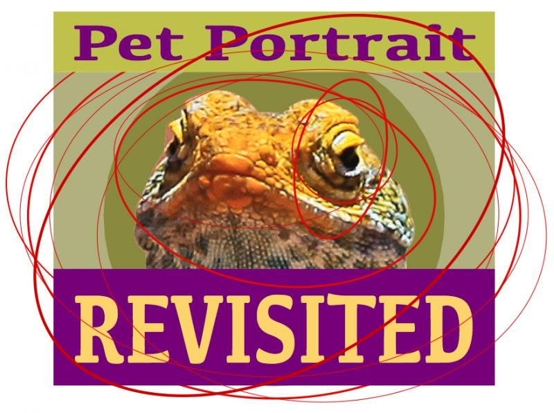 Pet Portrait Revisited