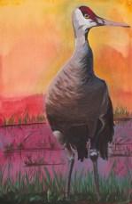 """Sandhill Crane III, acrylic on canvas, 24 x 36"""""""