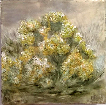 Michener rabbitt_brush_2