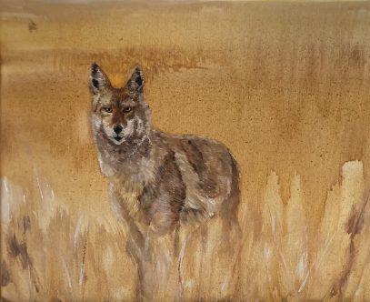 """Watcher, Oil on Canvas, 11""""x14"""""""
