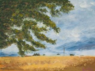 Katie Wells landscape_web