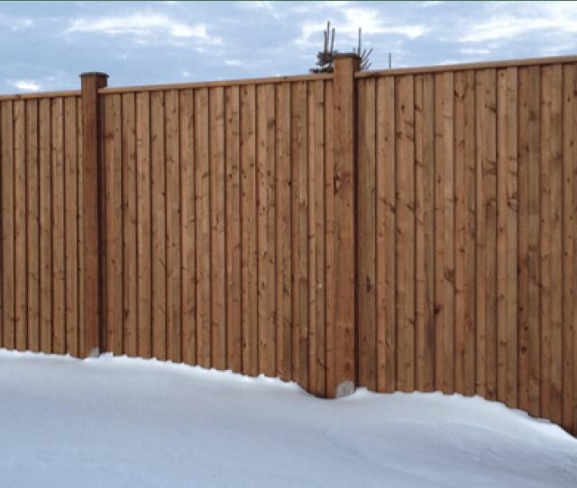 Western Species Brown Fence Dw