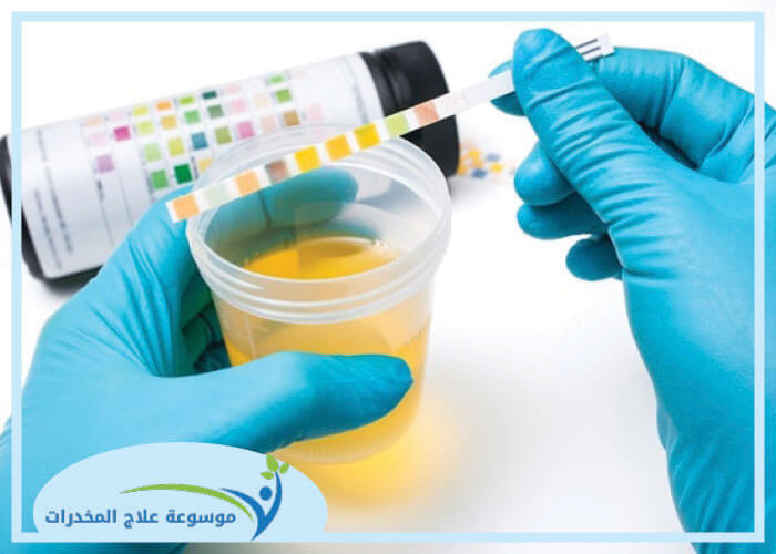 صورة عنوانها Use a Home Pregnancy Test Step 6