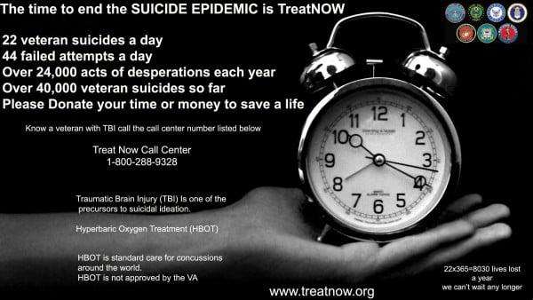 End Veteran Suicides
