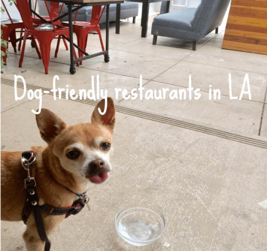 dog-friendly-restaurants-in-la