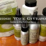 Fresh Wave Review and {Giveaway Closed}