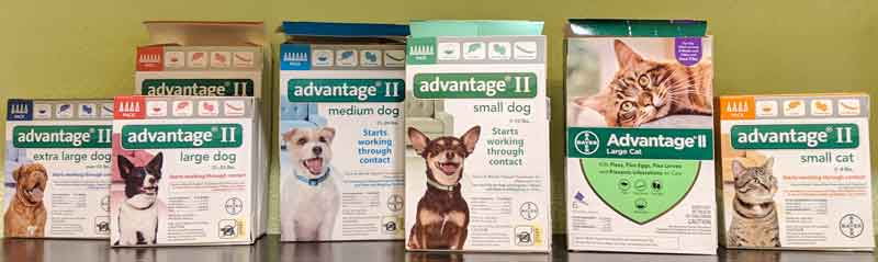 Advantage flea control products at Tré Bone