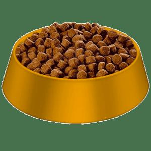 Dog Food - Dry