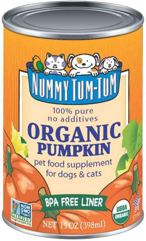 Nummy Tum Tum pumpkin can
