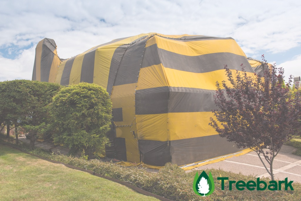 Termite Treatment Tenting is crucial. : house tenting for termites - memphite.com