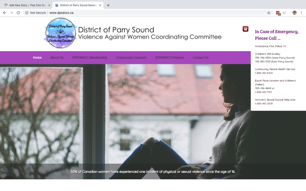 Non Profit Website with Slider and Custom Pop-out
