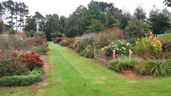 Waiongana Gardens field trip