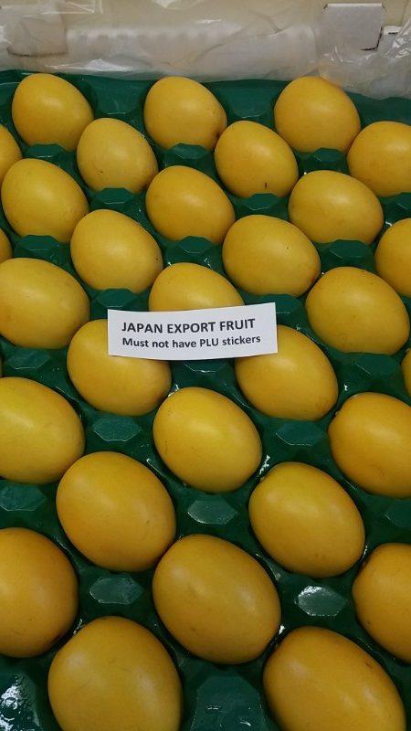 Gold passionfruit