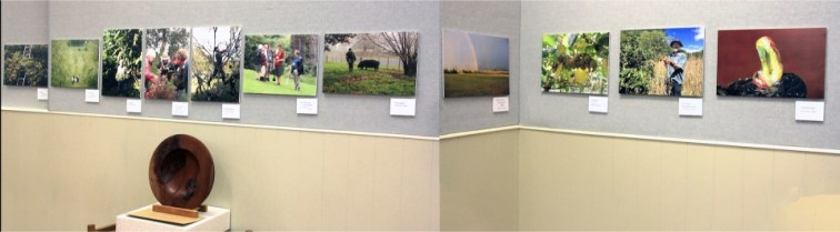 Inaugural Dick Roberts Photo Competition entrants