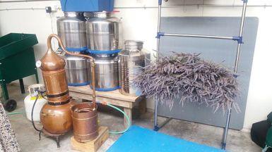 Lavender distilling equipment