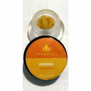 IMPERIAL EXTRACTS | MIMOSA LIVE RESIN| 1 GRAM BUDDER SORBET