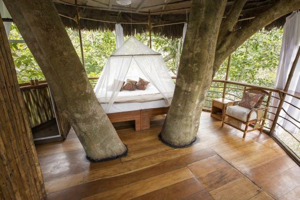 treehouse hotel peru