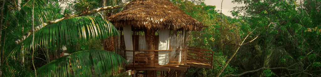 treehouse lodge ecologic