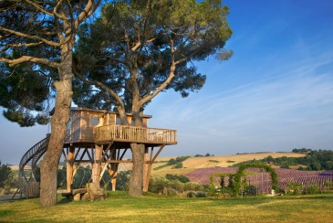 outside view from La Piantata Black Cabin Treehouse