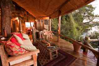 Luxury treehotel interior in africa
