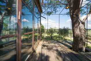 Treehouse in Italy, Toscana - casaBARTHEL Florence-050