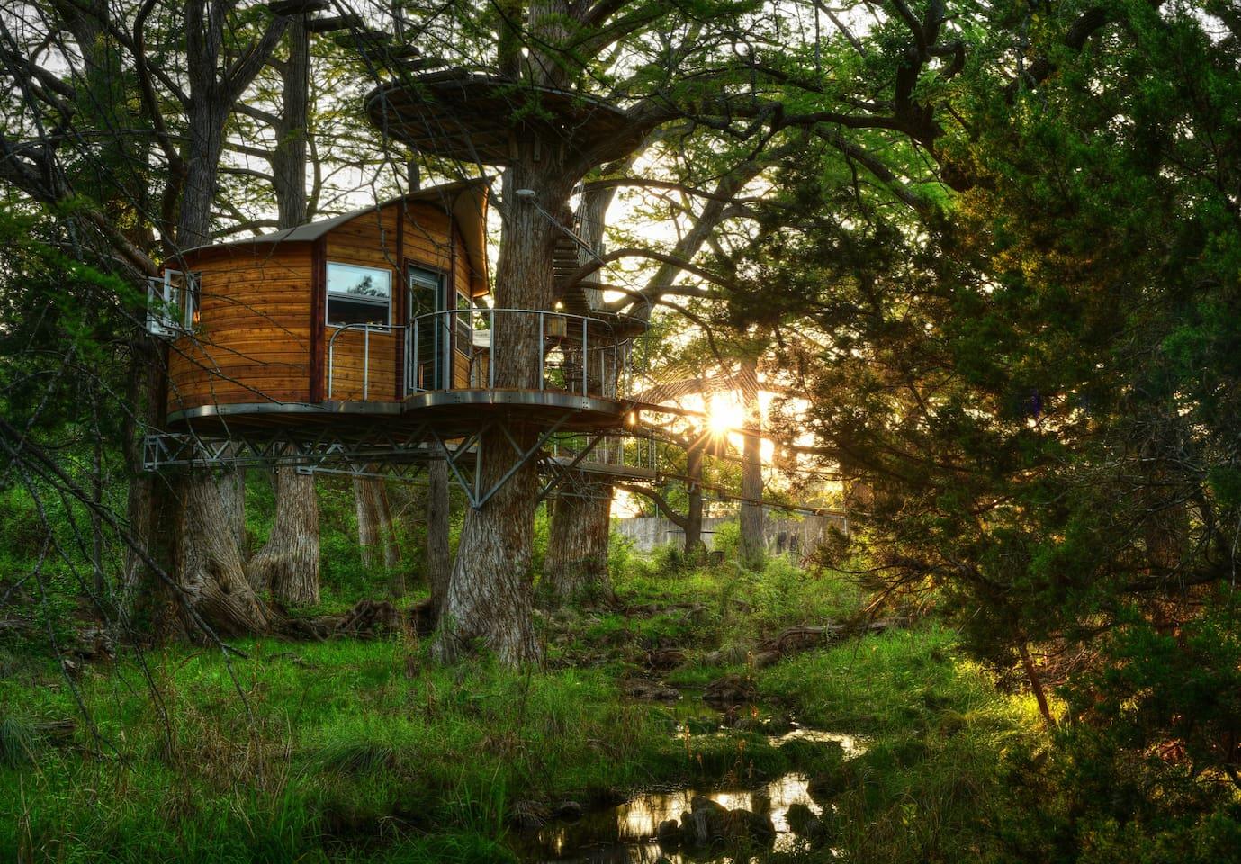 Juniper-Texas-Treehouse-Rental