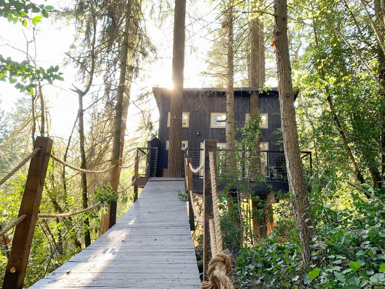 Eagles Nest Tree House Oregon AirbnbEagles Nest Tree House Oregon Airbnb