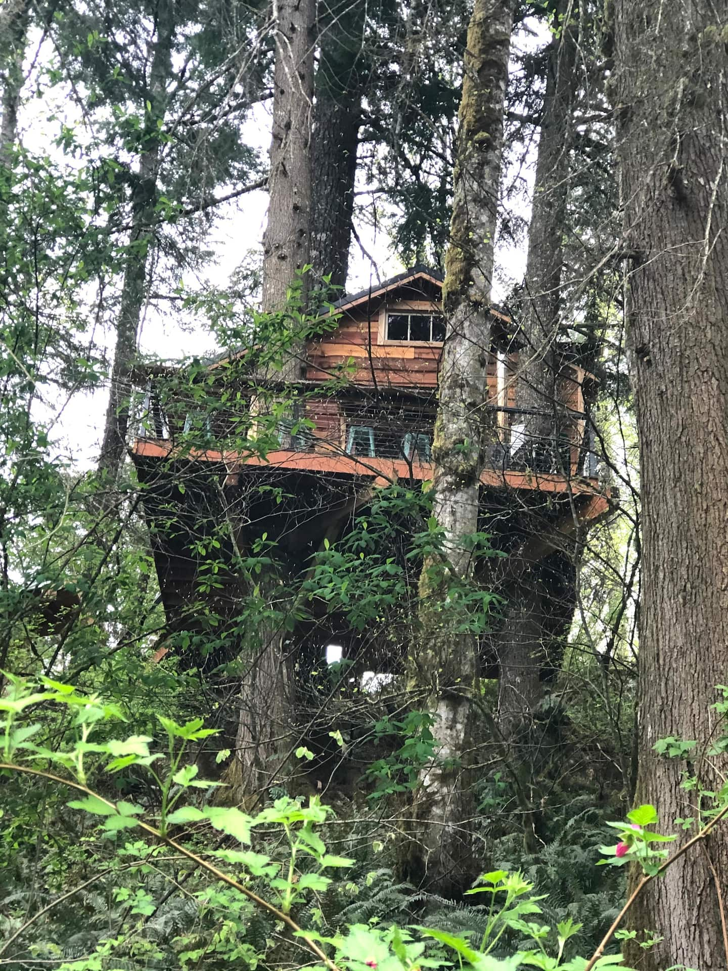 Treehouse Glamping Adventure in Sandy Oregon Airbnb